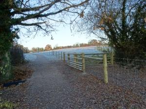 wheatrick-and-ntna-fencing_nov16_ma