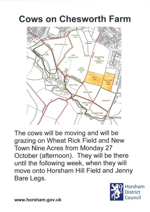 VM-PRINT_H0573_4309_001 cows wheat rick & new town