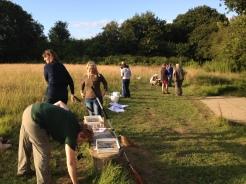 Preparing to meadow-sweep