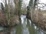 Weir above wetland: David Verrall