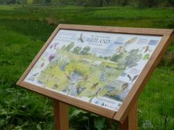 The wetland interpretation board, adding information on site