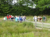 Members and guests of the Friends of Chesworth Farm at the wetland. Photo by Dave Verrall