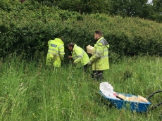 Employees from UK Power Networks from E and W Sussex work together on farm projects