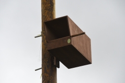 Kestrel nest box in position