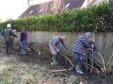 Hedge-laying team at work_1 Feb 2020 by Ryan Allison