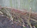 Hedgelaying session 2_Hedge#1_VC garden_1 Feb 20_DavidVerrall