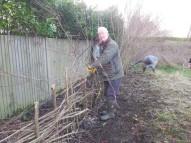 Hedgelaying session 2_Jim Ashworth_VC garden_1 Feb 20_David Verrall